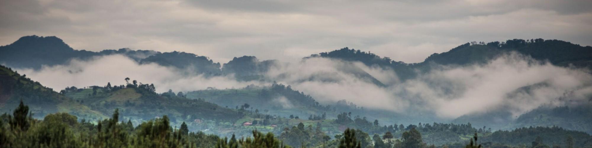 Volcanoes Bwindi_landscape