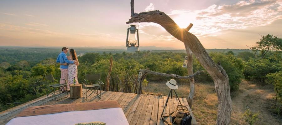 honeymoon safari QRrRuvKw