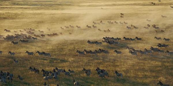 Botswana - Makgadikgadi - Jack's Camp - Pans 2