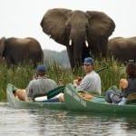 Mana Pools National Park