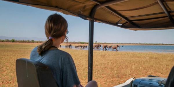 Zimbabwe - Matusadona National Park & Lake Kariba - Game Drives