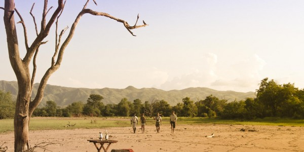Zimbabwe - Matusadona National Park & Lake Kariba - Game Walk
