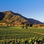 Winelands of Chile