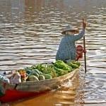 Mekong Delta & River Cruises