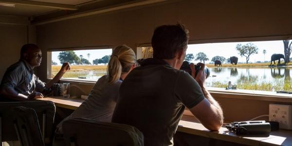 Zimbabwe - Hwange National Park - Linkwasha Camp - Hide