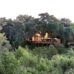 Londolozi Tree Camp