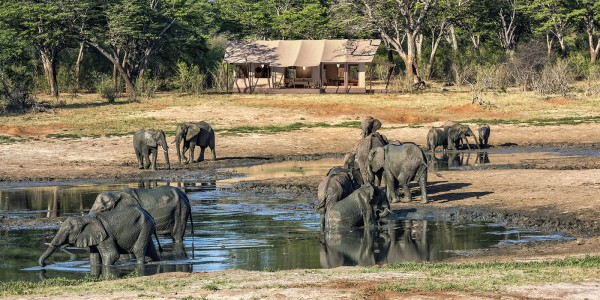 Zimbabwe - Hwange National Park - Verney's Camp - Overview