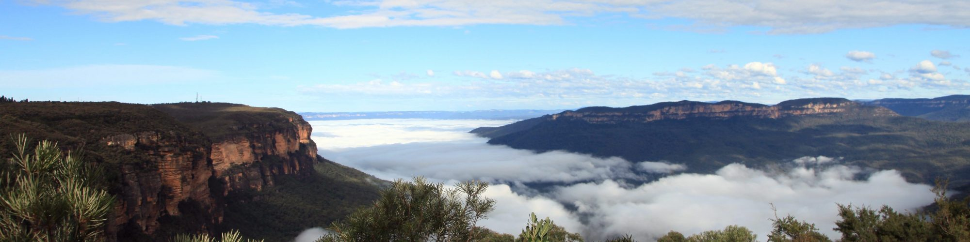 Blue Mountains - Credit: Dave Ireland Tourism Australia