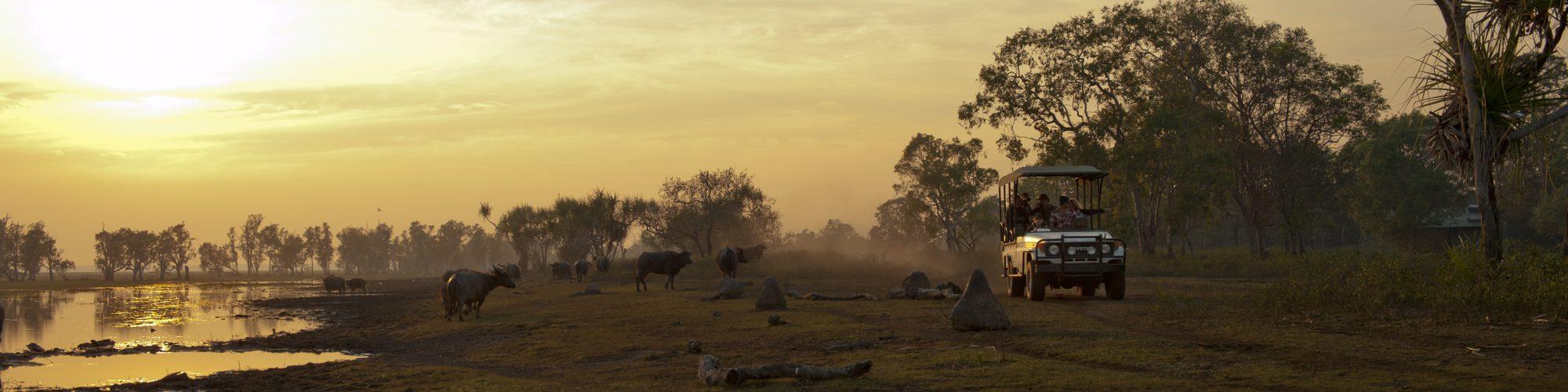 Sunset, Bamurru Plains, NT